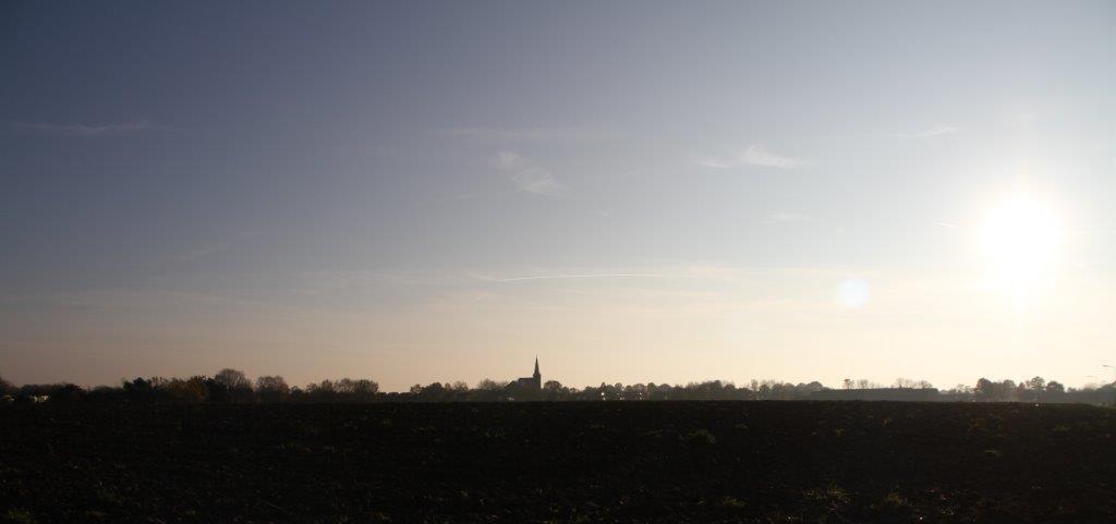 Genhout (64)